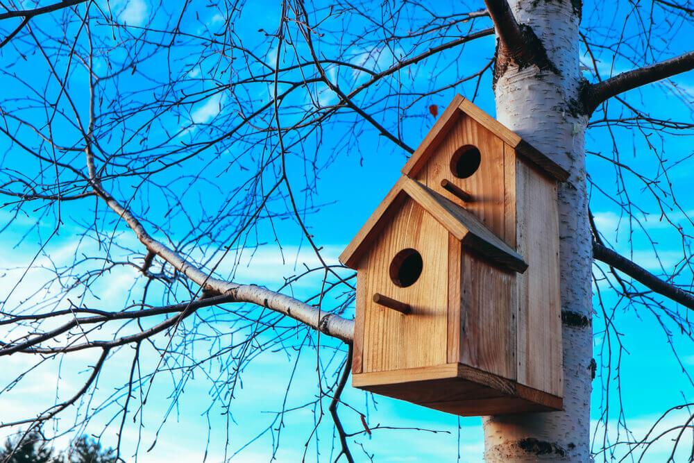 Vogelhaus Holz am Baum